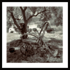 black and white fine art print gallery